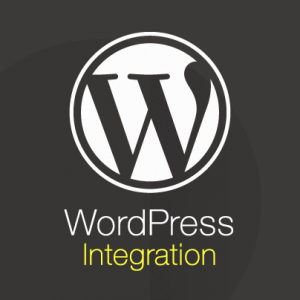 Best Ways to Integrating WordPress and Magento